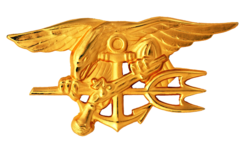 "The Special Warfare insignia, or ""SEAL Trident."""
